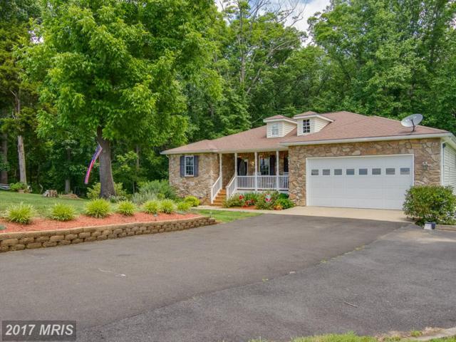 15503 Cedar Hill Drive, Mineral, VA 23117 (#SP9959906) :: Pearson Smith Realty