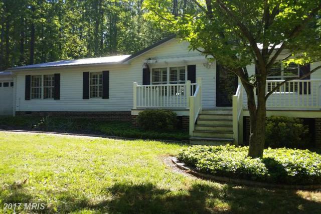 5817 Paynes Lane, Spotsylvania, VA 22551 (#SP9964962) :: LoCoMusings