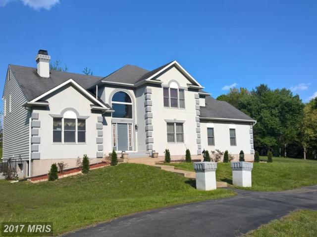 12307 Glade Drive, Fredericksburg, VA 22407 (#SP9966475) :: Pearson Smith Realty