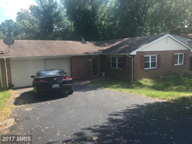 3901 Glazebrook Drive, Fredericksburg, VA 22407 (#SP9966674) :: Pearson Smith Realty