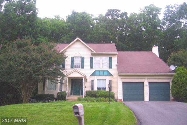 5923 Cambridge Drive, Fredericksburg, VA 22407 (#SP9967889) :: LoCoMusings