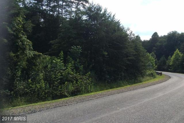 5613 Bazzanella Drive, Mineral, VA 23117 (#SP9977498) :: LoCoMusings