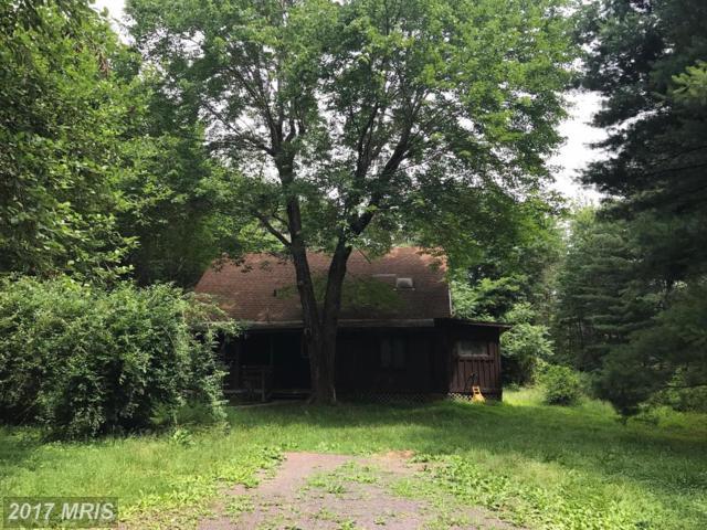 11330 Chancellor Meadows Lane, Locust Grove, VA 22508 (#SP9978873) :: Pearson Smith Realty