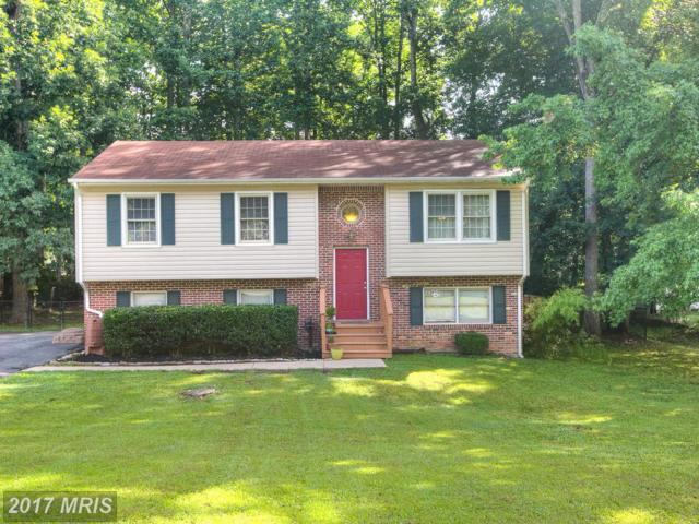7205 Plantation Forest Drive, Spotsylvania, VA 22553 (#SP9982488) :: LoCoMusings