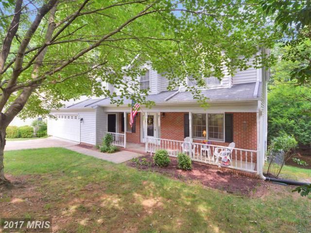 6325 Forest Grove Drive, Fredericksburg, VA 22407 (#SP9984901) :: Pearson Smith Realty