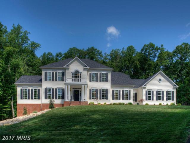 8706 Laroque Run Drive, Fredericksburg, VA 22407 (#SP9987917) :: LoCoMusings