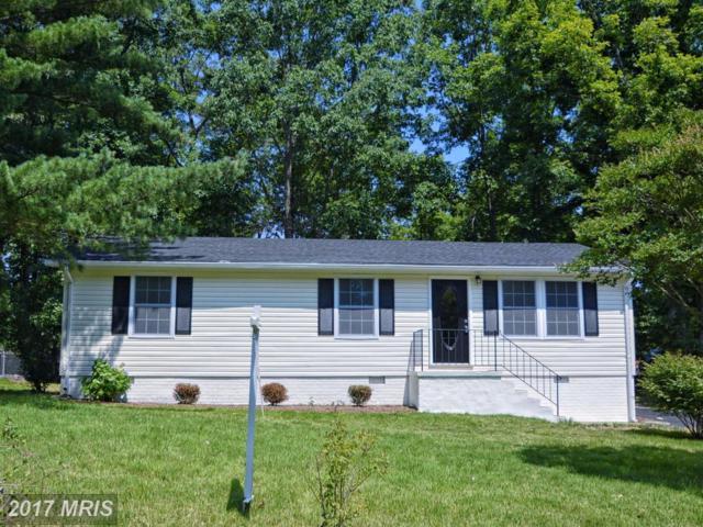 10909 Buckskin Lane, Fredericksburg, VA 22407 (#SP9988663) :: LoCoMusings