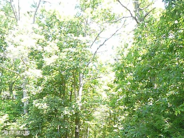 11103 Stockade Drive, Spotsylvania, VA 22551 (#SP9989095) :: LoCoMusings