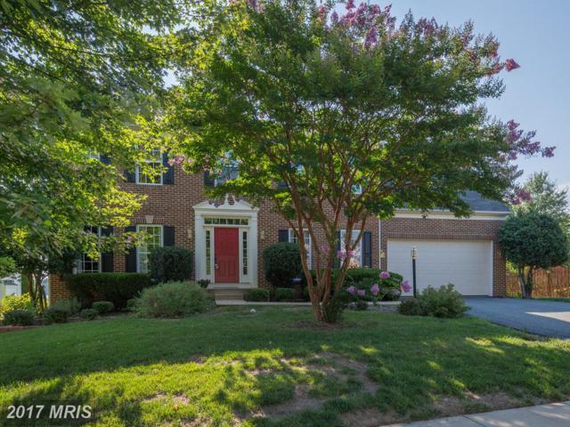 10 Palladio Drive, Stafford, VA 22554 (#ST10022421) :: Pearson Smith Realty