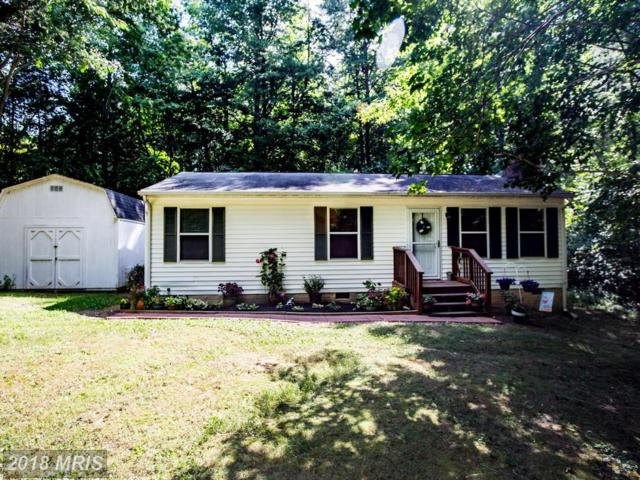 41 Whispering Oaks Lane, Fredericksburg, VA 22406 (#ST10026699) :: Pearson Smith Realty