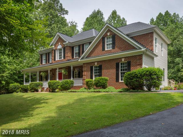 118 Affirmed Drive, Stafford, VA 22556 (#ST10030923) :: Pearson Smith Realty