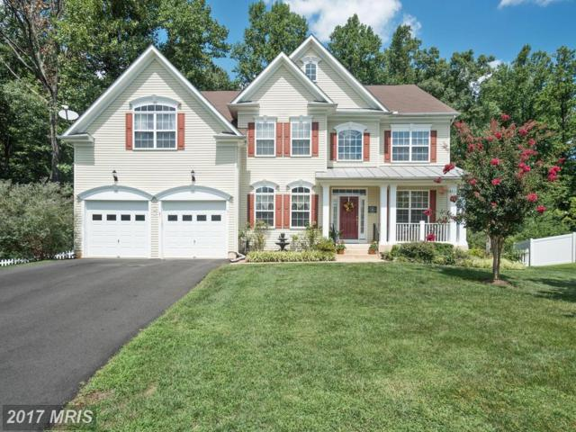 31 Saint Richards Court, Stafford, VA 22556 (#ST10033786) :: Pearson Smith Realty