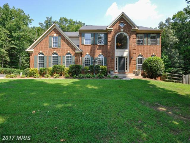 64 Meadowbrook Lane, Stafford, VA 22554 (#ST10036902) :: Pearson Smith Realty