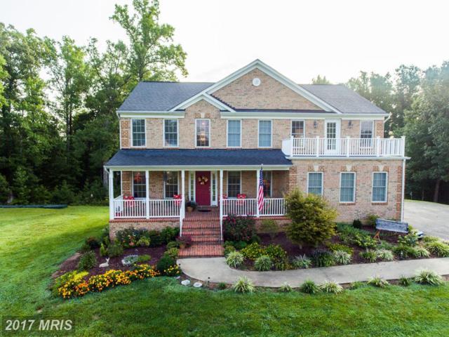 73 Royal Hills Drive, Fredericksburg, VA 22406 (#ST10040217) :: Pearson Smith Realty