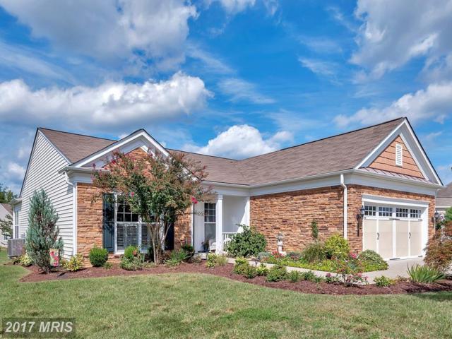 5 Lightmont Drive, Fredericksburg, VA 22406 (#ST10048930) :: Pearson Smith Realty