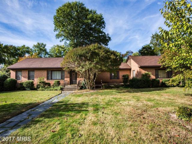 11 Braxton Lane, Fredericksburg, VA 22405 (#ST10050260) :: Pearson Smith Realty