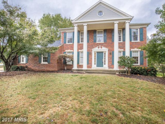 2 Dawson Drive, Fredericksburg, VA 22405 (#ST10076996) :: Pearson Smith Realty