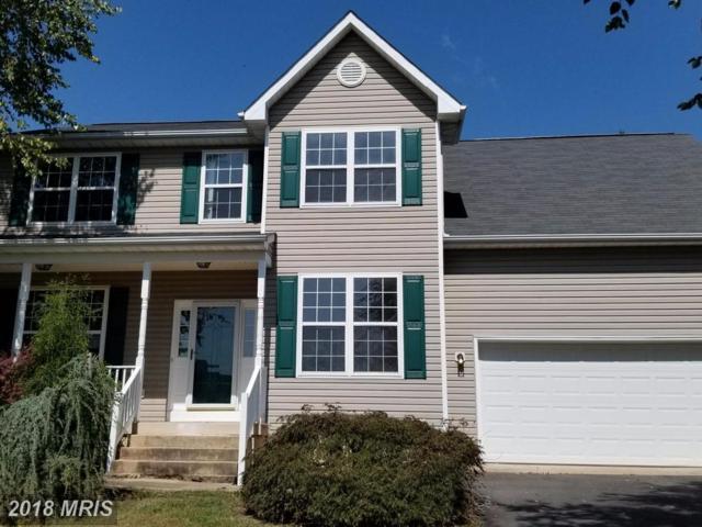 33 Sunset Ridge Lane, Fredericksburg, VA 22405 (#ST10088595) :: The Gus Anthony Team