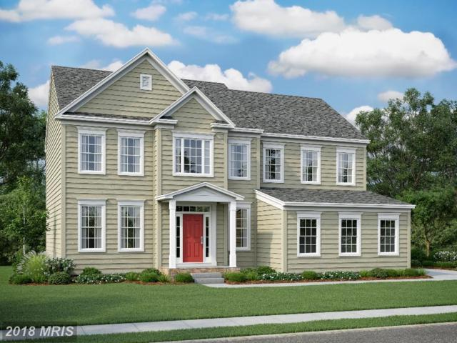 19 Cranes Bluff Court, Fredericksburg, VA 22405 (#ST10096754) :: Pearson Smith Realty