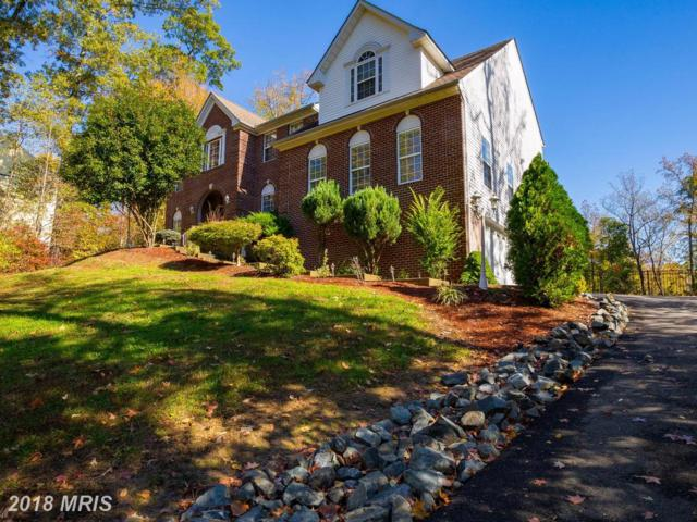 38 Poplar View Drive, Stafford, VA 22554 (#ST10097407) :: Browning Homes Group