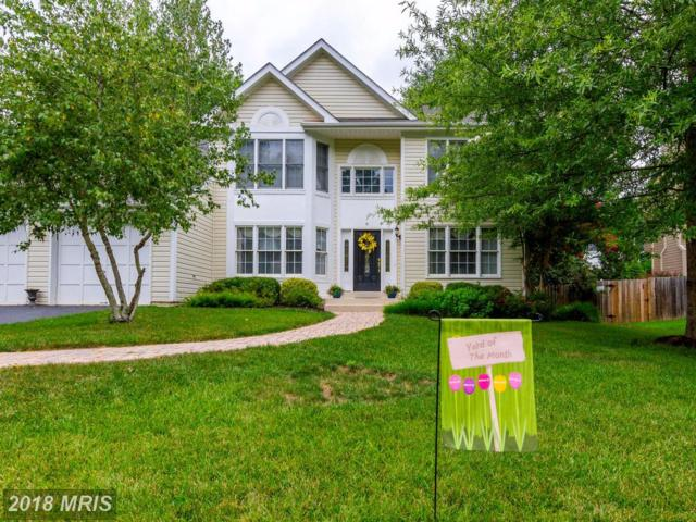 6 Appling Road, Stafford, VA 22554 (#ST10107554) :: Pearson Smith Realty