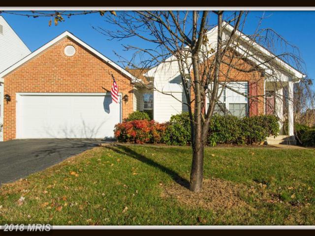 2 Joplin Court, Stafford, VA 22554 (#ST10109019) :: Pearson Smith Realty