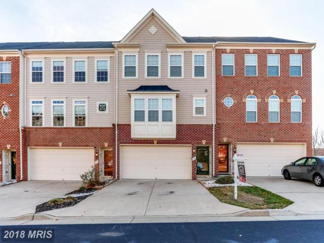 12 Hunting Creek Lane, Stafford, VA 22556 (#ST10113333) :: Pearson Smith Realty