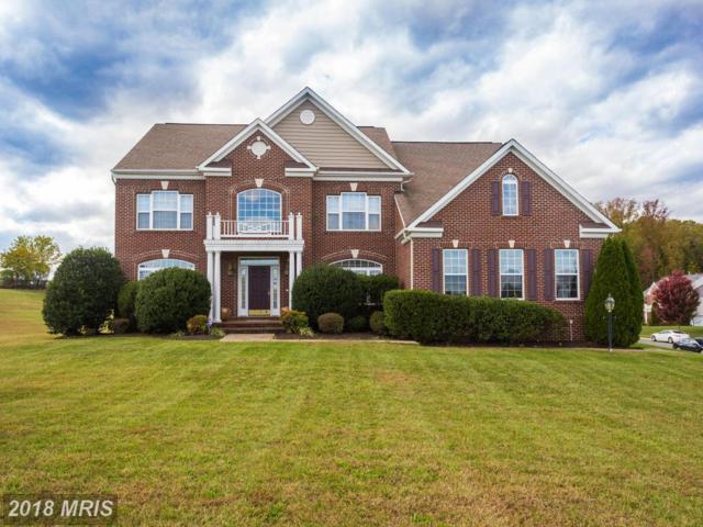 8 Prospect Drive, Fredericksburg, VA 22405 (#ST10114211) :: Pearson Smith Realty