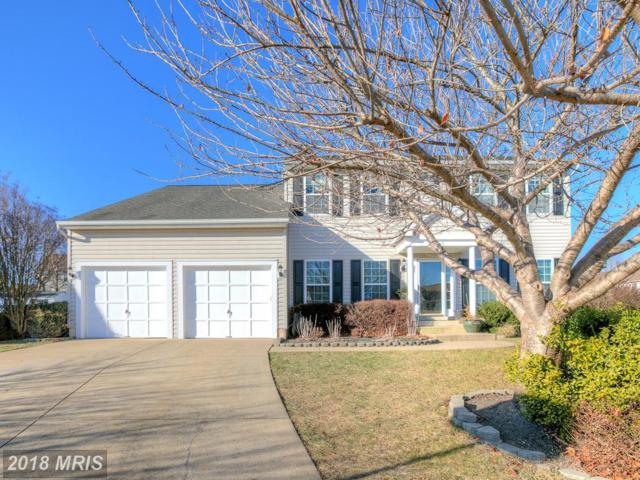 9 Country Court, Stafford, VA 22554 (#ST10125608) :: Pearson Smith Realty