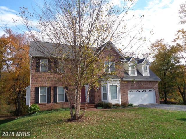 2 Lockwood Drive, Fredericksburg, VA 22405 (#ST10132256) :: Pearson Smith Realty
