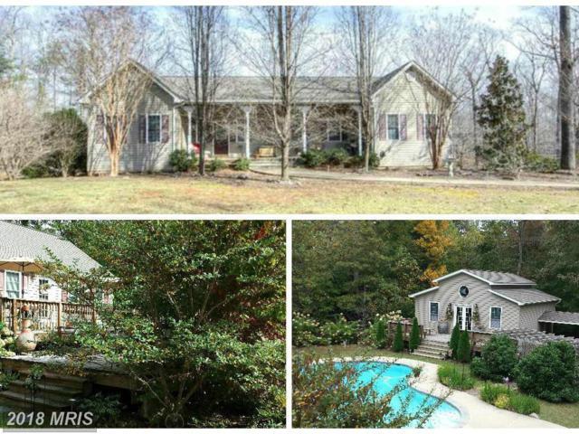 254 Spotted Tavern Road, Fredericksburg, VA 22406 (#ST10166225) :: Keller Williams Pat Hiban Real Estate Group
