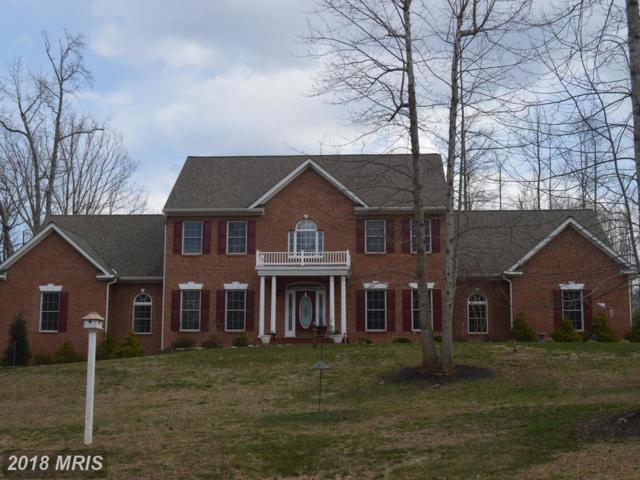 19 Saint Marys Lane, Stafford, VA 22556 (#ST10173018) :: Keller Williams Pat Hiban Real Estate Group