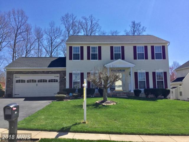 36 Aurelie Drive, Fredericksburg, VA 22406 (#ST10191321) :: Keller Williams Pat Hiban Real Estate Group