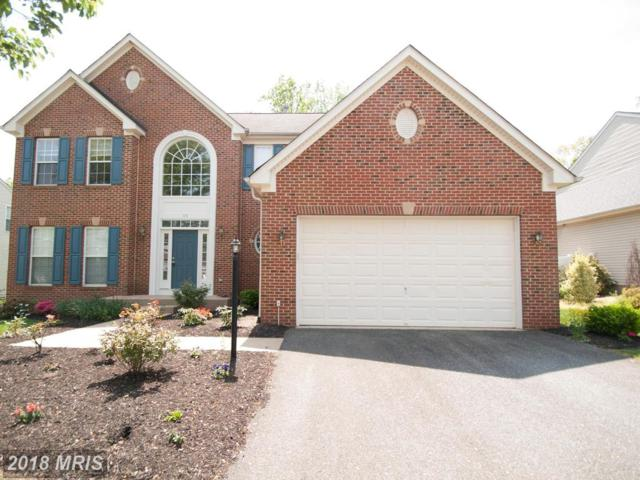 65 Kinross Drive, Stafford, VA 22554 (#ST10201830) :: The Gus Anthony Team