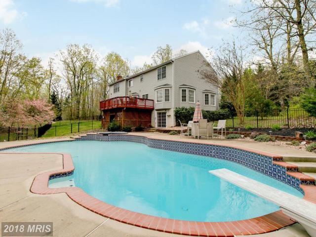 1480 Truslow Road, Fredericksburg, VA 22406 (MLS #ST10220795) :: Explore Realty Group