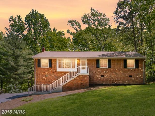 115 Brookewood Drive, Fredericksburg, VA 22405 (#ST10236977) :: The Gus Anthony Team