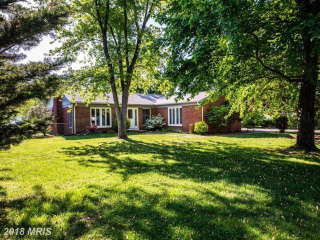 702 Payton Drive, Fredericksburg, VA 22405 (#ST10237510) :: The Maryland Group of Long & Foster