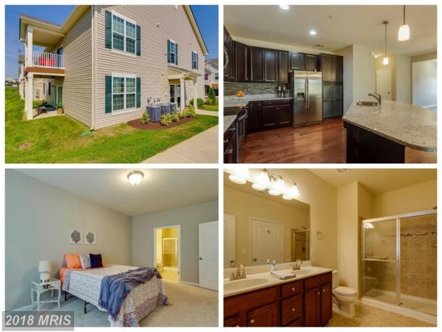 130 Dandridge Court #101, Stafford, VA 22554 (#ST10244021) :: Keller Williams Pat Hiban Real Estate Group