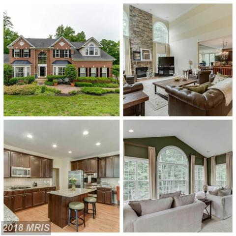 1012 Decatur Road, Stafford, VA 22554 (#ST10256325) :: The Gus Anthony Team