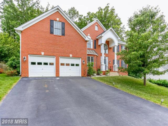 6 Oleander Drive, Stafford, VA 22554 (#ST10257091) :: The Maryland Group of Long & Foster