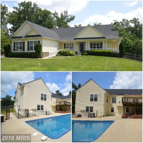 320 Gentle Breeze Circle, Fredericksburg, VA 22406 (MLS #ST10264465) :: Explore Realty Group