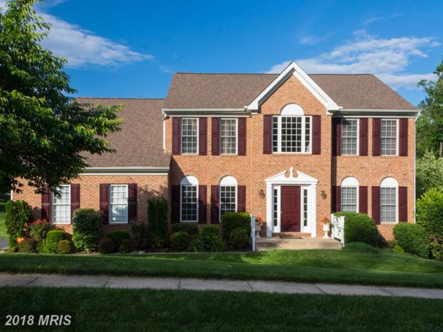 4 Trellis Drive, Stafford, VA 22554 (#ST10268446) :: The Maryland Group of Long & Foster