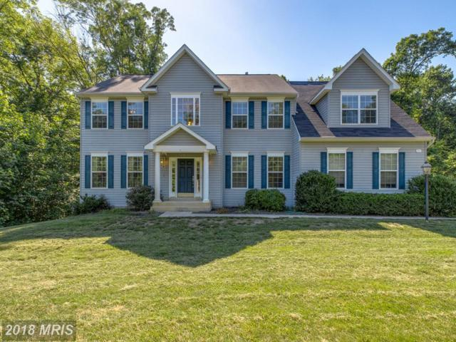 51 Maplewood Drive, Stafford, VA 22554 (#ST10272534) :: RE/MAX Executives