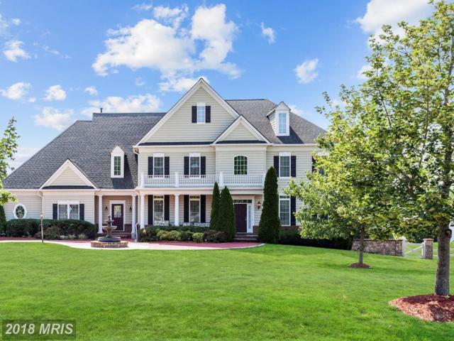 10 Lupine Drive, Stafford, VA 22556 (#ST10301036) :: Browning Homes Group