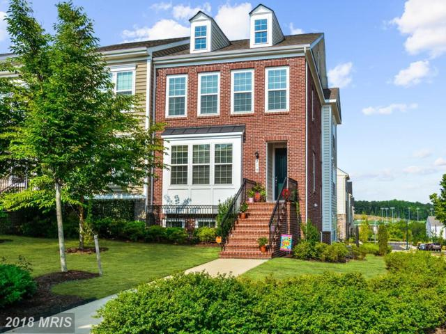 219 Apricot Street, Stafford, VA 22554 (MLS #ST10301124) :: Explore Realty Group