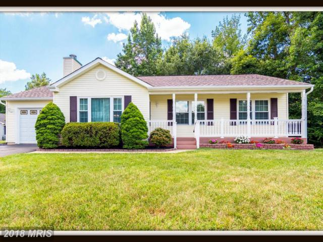 263 Vine Place, Stafford, VA 22554 (#ST10304217) :: Keller Williams Pat Hiban Real Estate Group