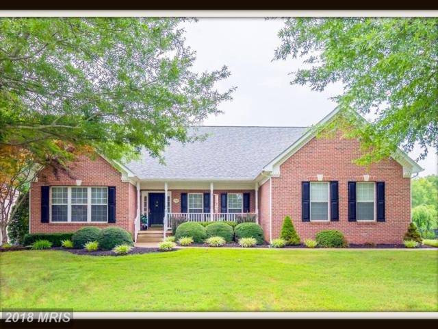 61 Kirby Lane, Stafford, VA 22554 (#ST10308334) :: Bob Lucido Team of Keller Williams Integrity