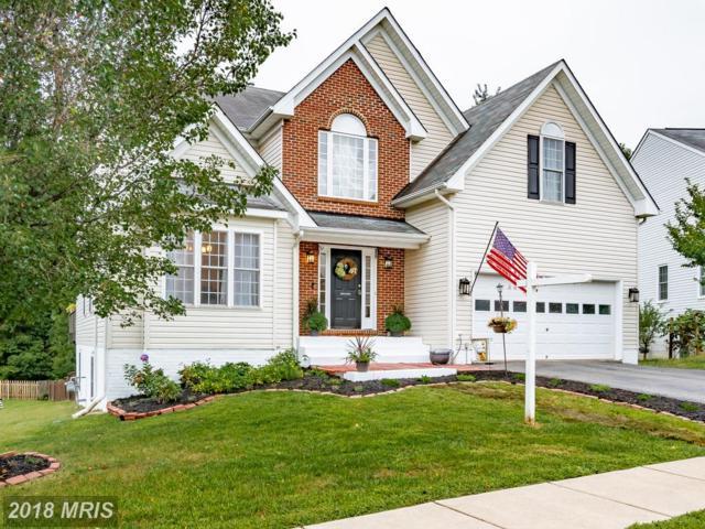 17 Grace Manor Court, Fredericksburg, VA 22406 (#ST10332589) :: Keller Williams Pat Hiban Real Estate Group