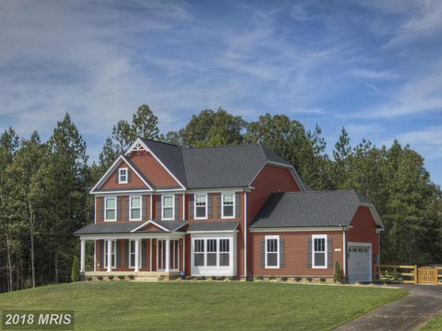 Indian Point Road, Stafford, VA 22554 (#ST9702195) :: Green Tree Realty