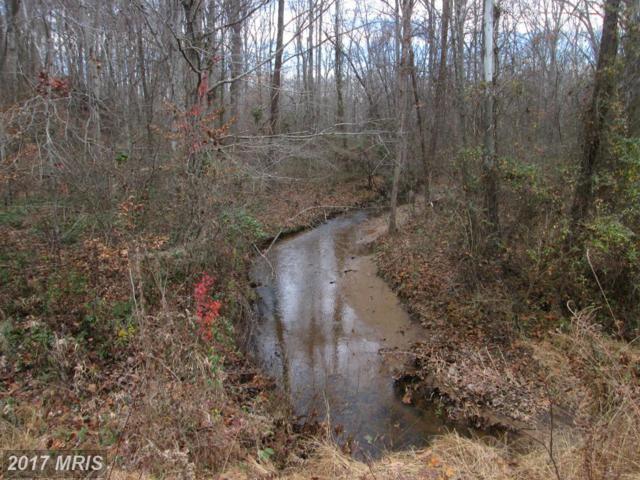 102 Rockhill Lane, Stafford, VA 22554 (#ST9821482) :: Pearson Smith Realty